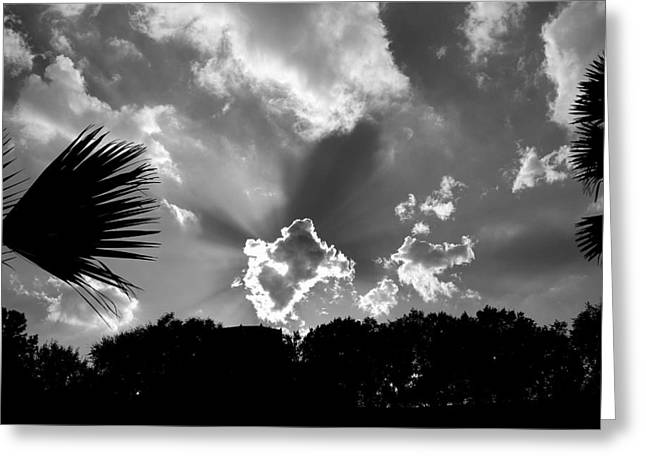 Monochrome Sunburst Greeting Card by Eric Liller