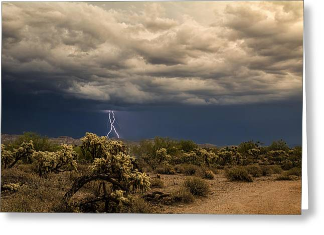 Monsoon Magic In The Desert Southwest Greeting Card by Saija  Lehtonen