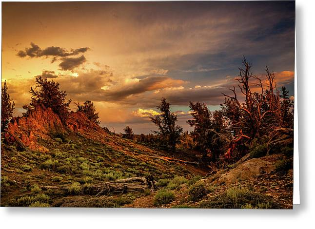 Monsoon Skies Over The Whites Greeting Card by Dan Holmes