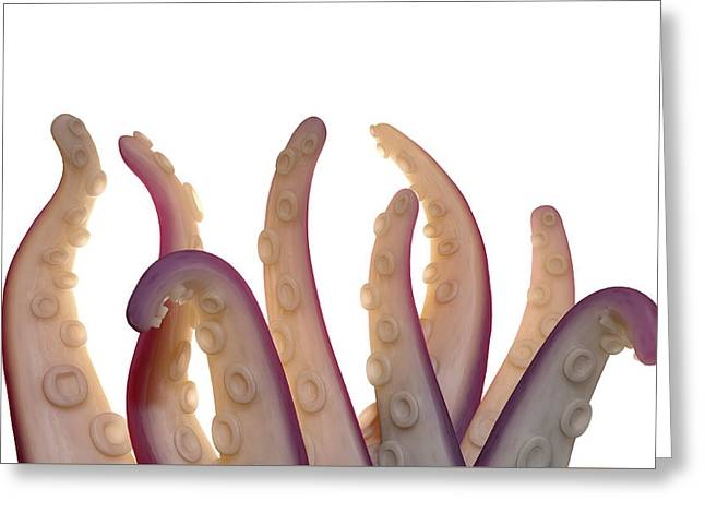 Monster Tentacles Isolated Greeting Card