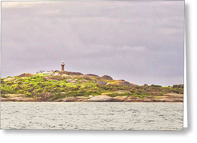 Montague Island - Nsw - Australia Greeting Card