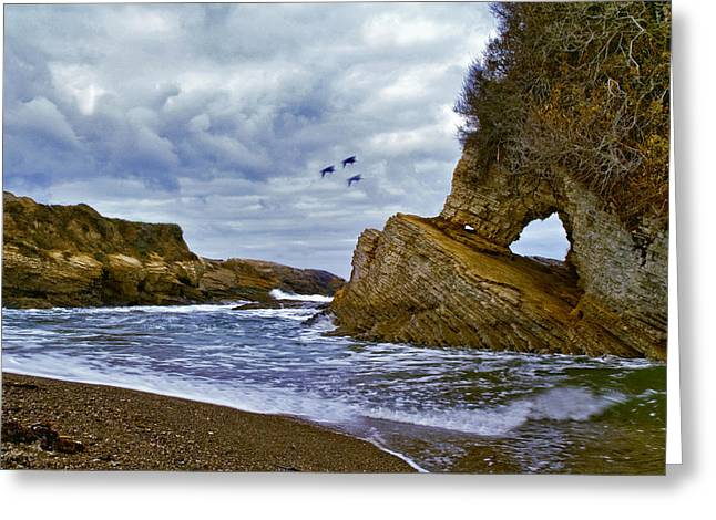 Greeting Card featuring the photograph Montana De Oro by Gary Brandes