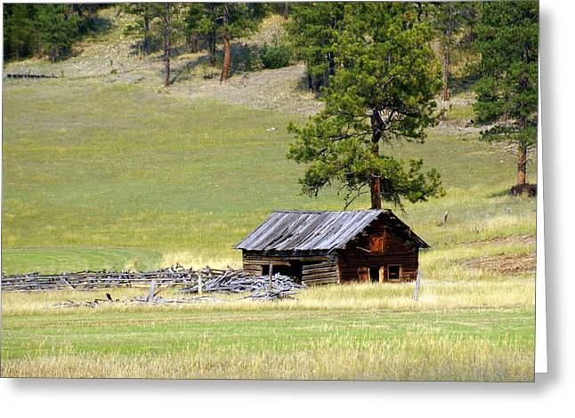 Montana Ranch 3 Greeting Card by Marty Koch