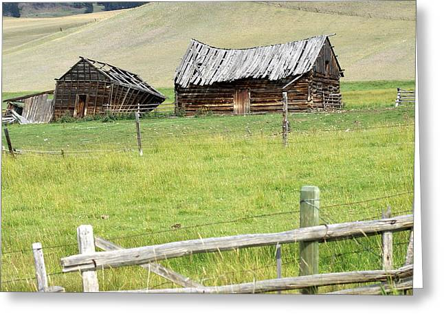Montana Ranch Greeting Card by Marty Koch