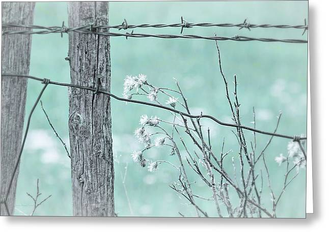 Montana Rustic Fence And Weeds Teal Greeting Card