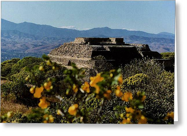 Indian Ruins Greeting Cards - Monte Alban 4 Greeting Card by Michael Peychich