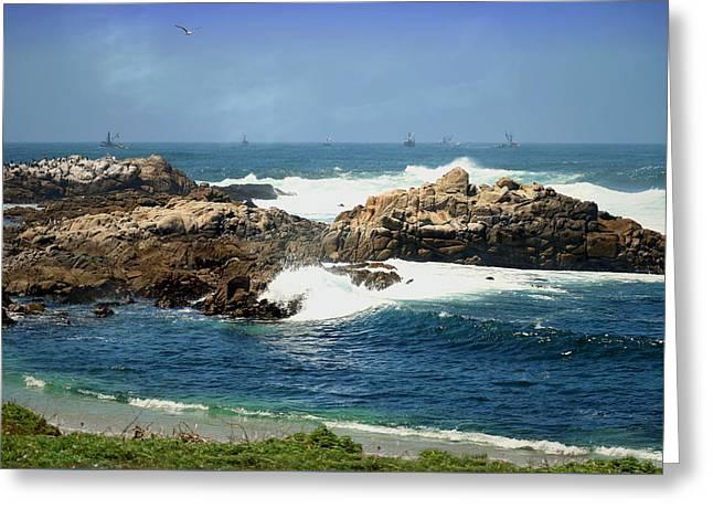 Monterey Bay Fishing Fleet Greeting Card