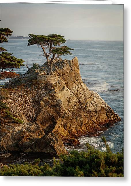Monterey California 2 Greeting Card by Mike Penney