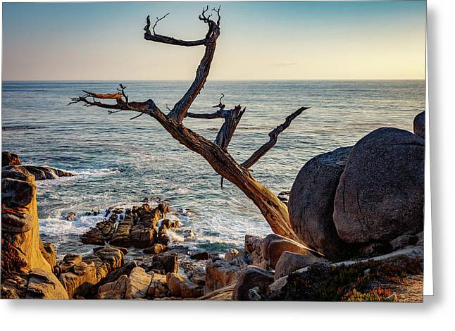 Monterey California 21 Greeting Card by Mike Penney