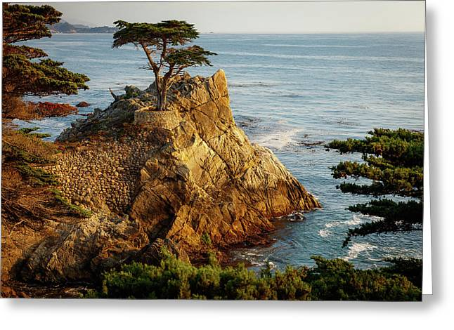Monterey California 3 Greeting Card by Mike Penney