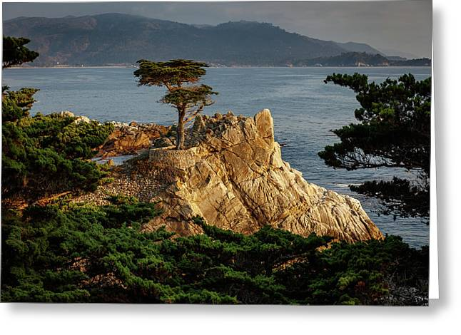Monterey California 4 Greeting Card by Mike Penney