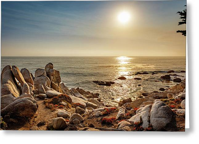 Monterey California 8 Greeting Card by Mike Penney