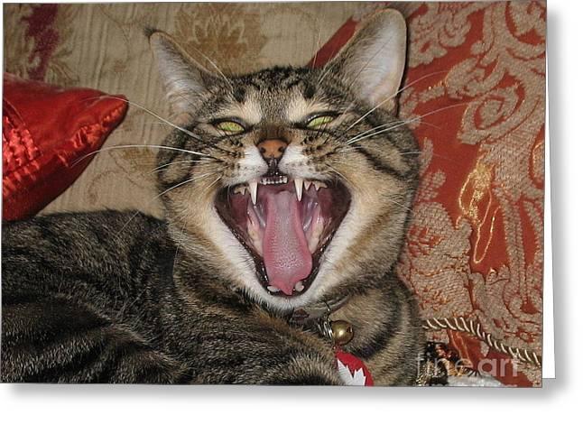 Monty's Yawn Greeting Card by Jolanta Anna Karolska