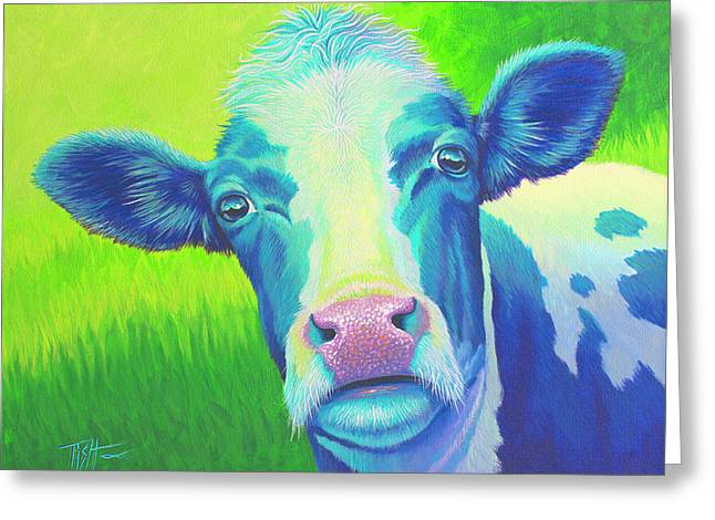 Moo Now Blue Cow Greeting Card
