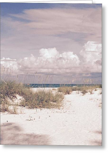 Greeting Card featuring the photograph Anna Maria Island Moods Of June by Jean Marie Maggi