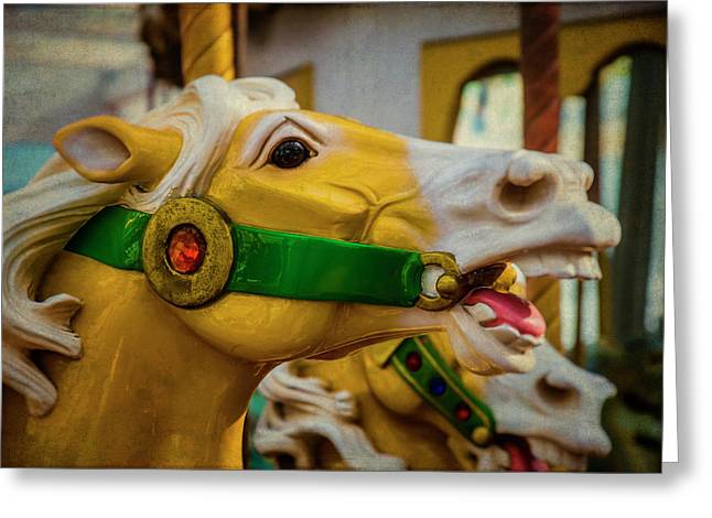 Moody  Carrousel Horse Greeting Card by Garry Gay