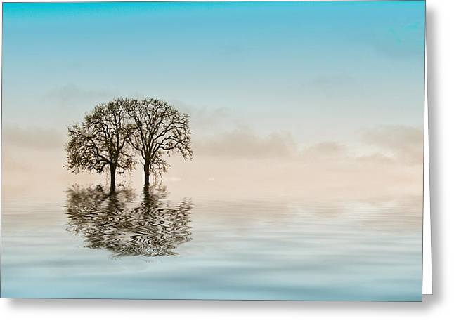 Moody Trees Greeting Card by Jean Noren