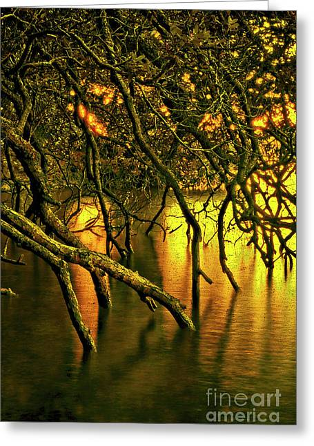 Moody Water Greeting Card by Karen Lewis