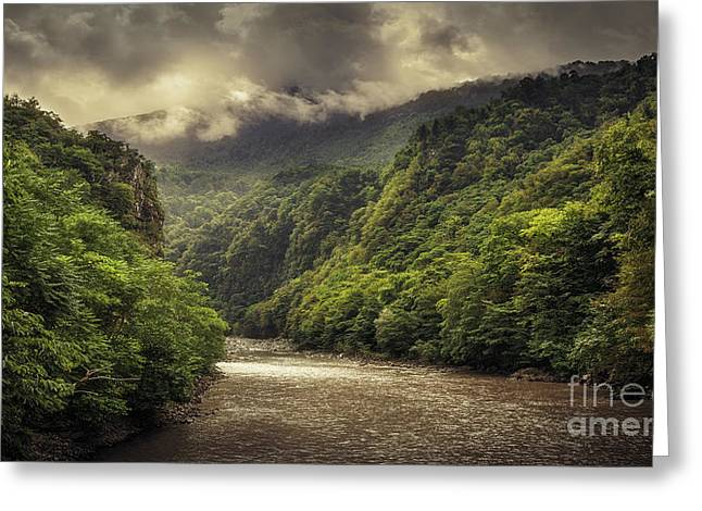 Moody Weather Greeting Card by Svetlana Sewell
