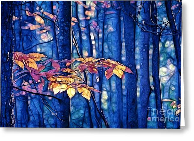 Greeting Card featuring the photograph Moody Woods by Aimelle