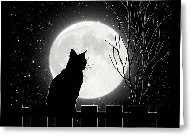 Moon Bath II Cat Contemplates The Full Moon Greeting Card by Tina Lavoie