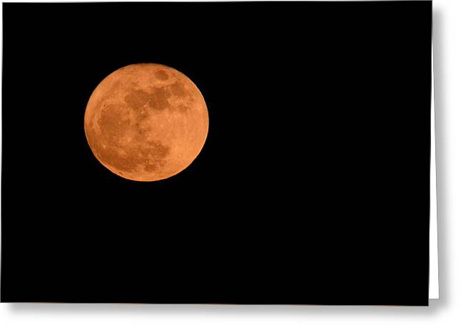 Greeting Card featuring the photograph Moon Before Yule  by Bradford Martin