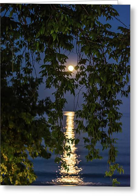 Moon Curtain Greeting Card