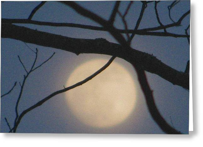 Moon Glow Greeting Card