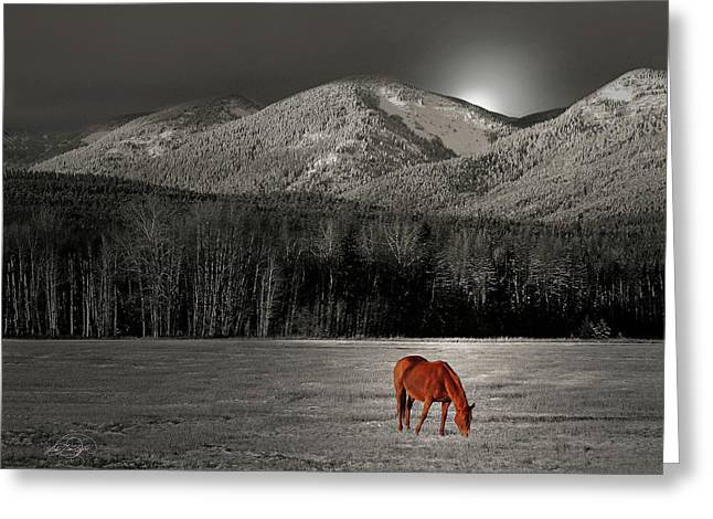 Moon Of The Wild Horse Greeting Card