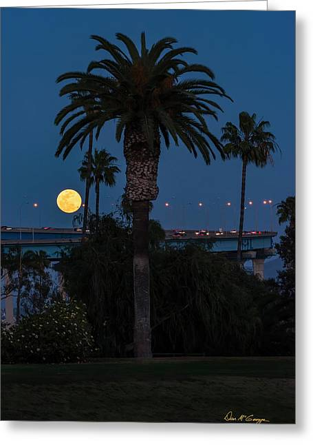 Greeting Card featuring the photograph Moon On The Rise by Dan McGeorge