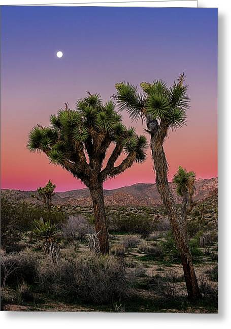 Greeting Card featuring the photograph Moon Over Joshua Tree by John Hight