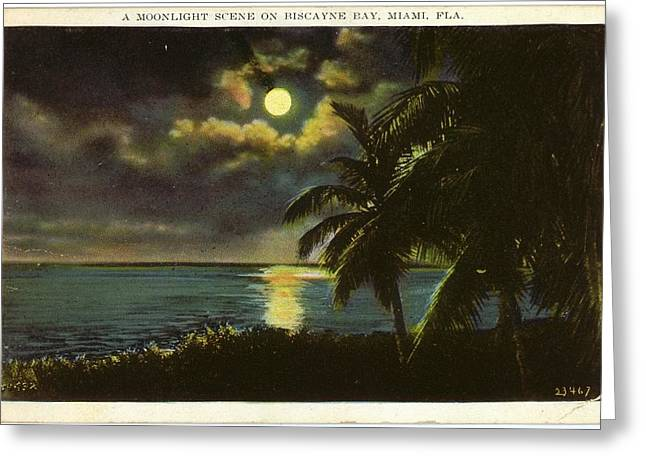 Moon Over Ocean And Tropical Trees Greeting Card