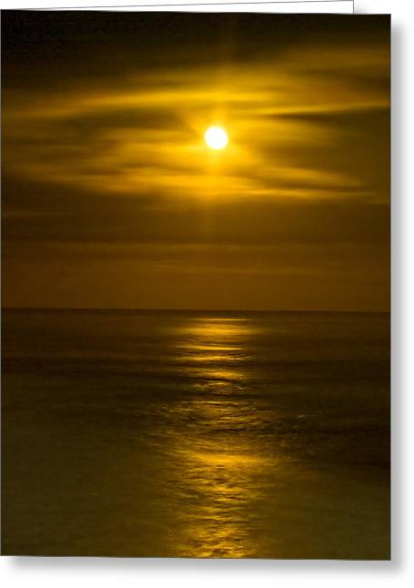 Moon Over Pacific Greeting Card by Dale Stillman