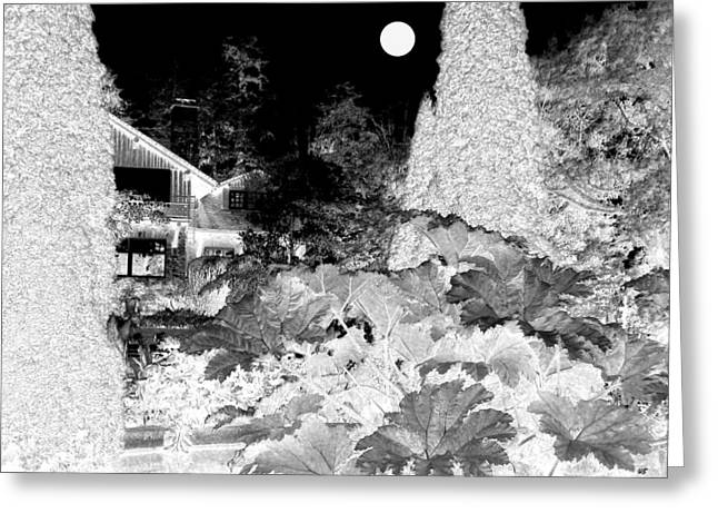 Moon Over Stanley Park Greeting Card