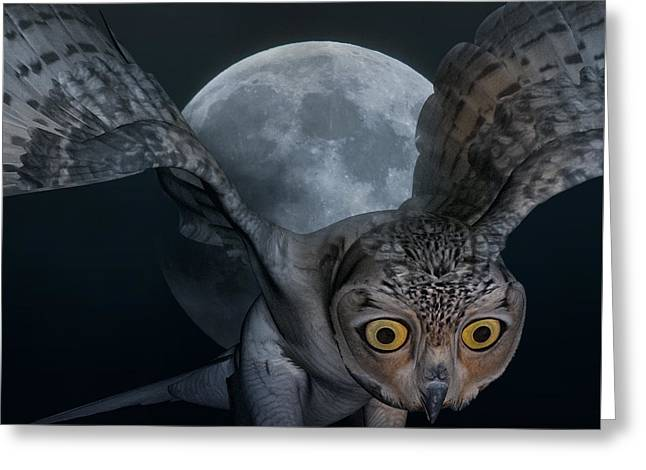 Moon Owl Greeting Card by Betsy Knapp