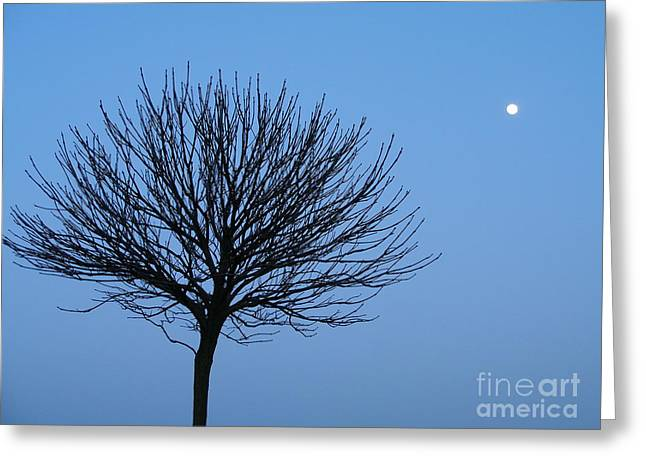 Greeting Card featuring the photograph Moon Rise by Michael Canning
