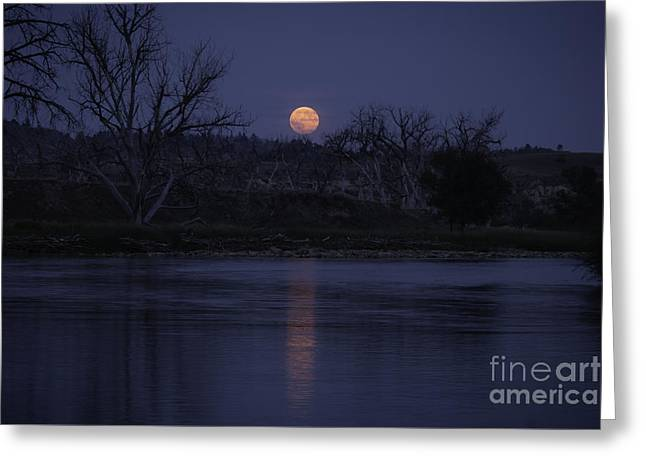Moon Rise Over The Tongue Greeting Card by Shevin Childers