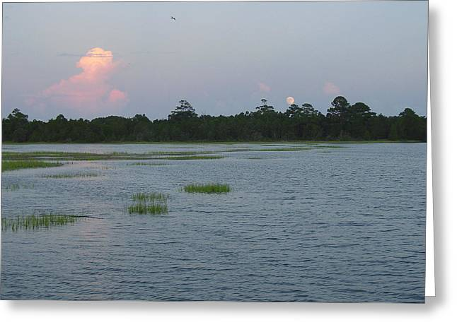 Moon Rising Over The Inlet Greeting Card by Suzanne Gaff