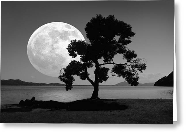 Moon Rising Over The Sea Greeting Card by Detlev Van Ravenswaay