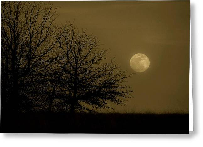 Moon Scape Greeting Card by Karen M Scovill