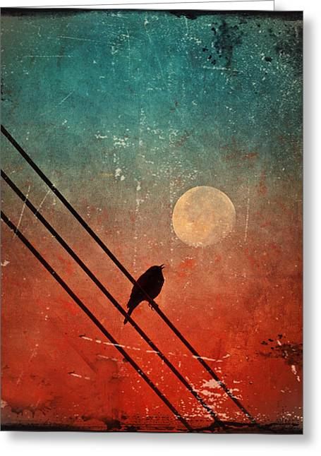 Birds Moon Greeting Cards - Moon Talk Greeting Card by Tara Turner