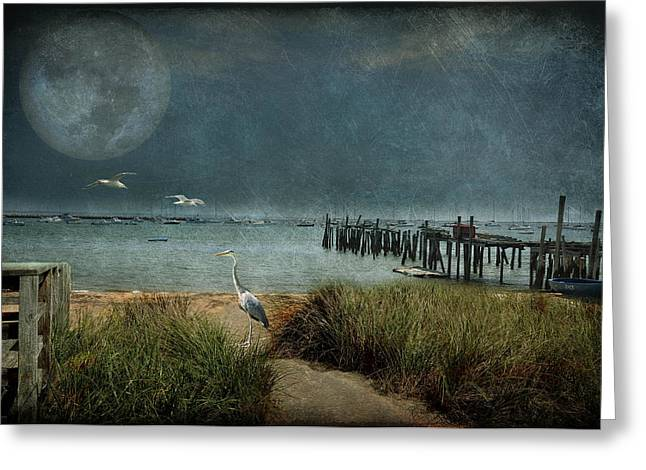 Moondance Greeting Card by Marie  Gale