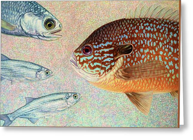 Mooneyes, Sunfish Greeting Card by James W Johnson