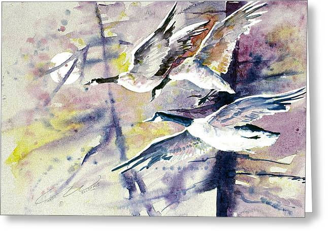 Moonlight Canadian Geese Greeting Card by Connie Williams