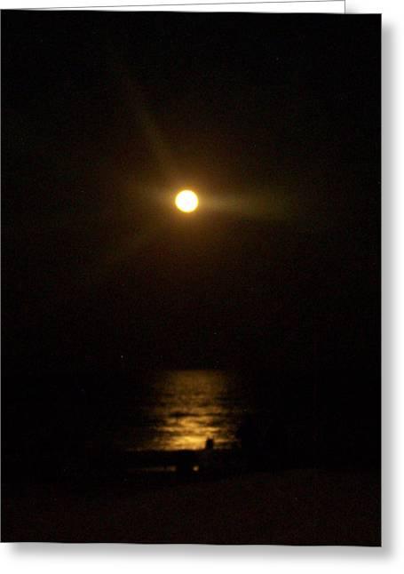 Moonlight Magic Greeting Card by Patricia Taylor