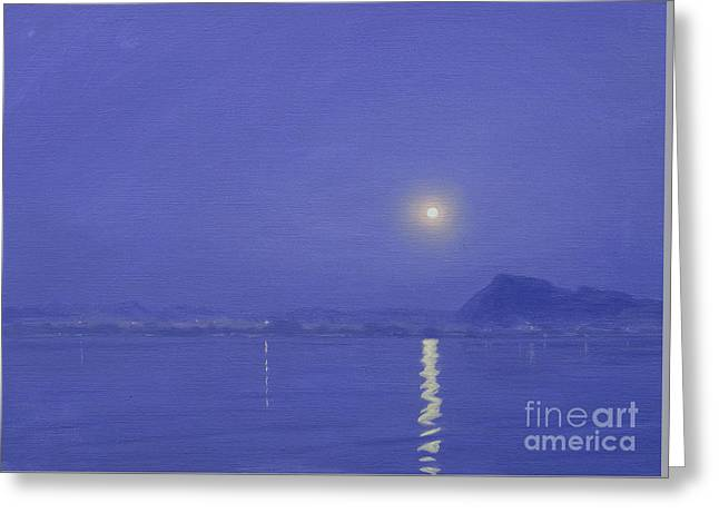 Moonlight Over Udaipur Greeting Card by Derek Hare
