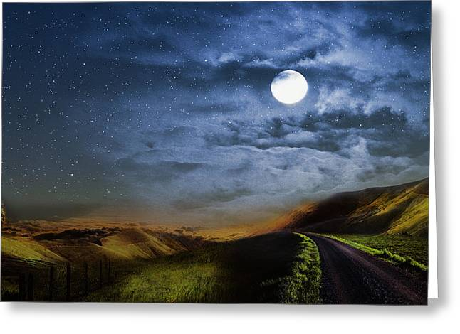Moonlight Path Greeting Card by Swank Photography