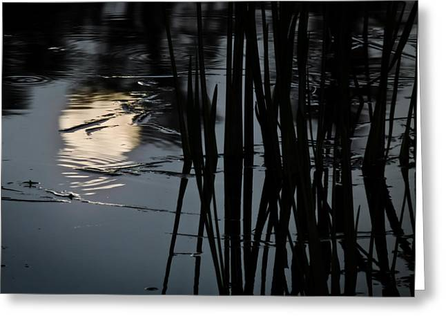 Moonlight Reflections Greeting Card