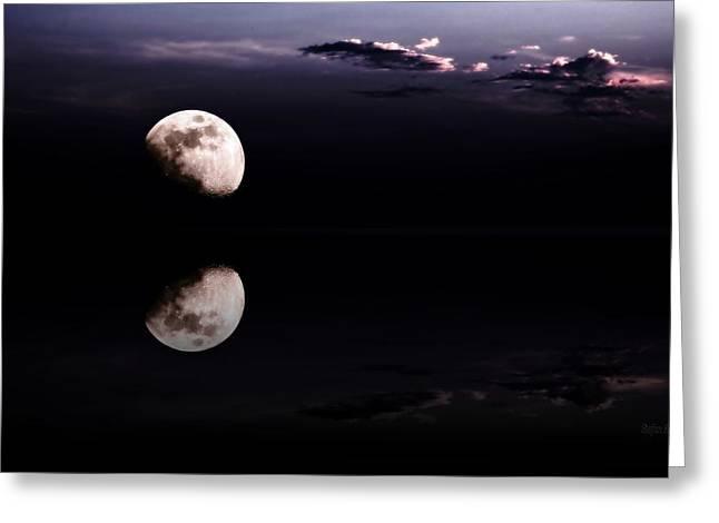 Moonlight Shadow Greeting Card by Steve K