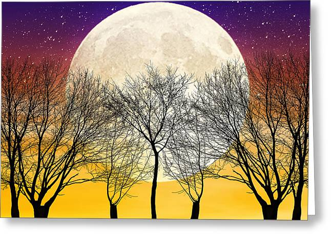 Moonlight Greeting Card by Swank Photography